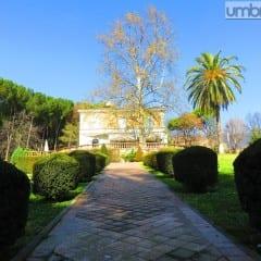 Alberi monumentali: ben 38 a Terni. A Villa Centurini il più alto