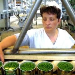 Ires Cgil Umbria: «Cala il lavoro femminile»
