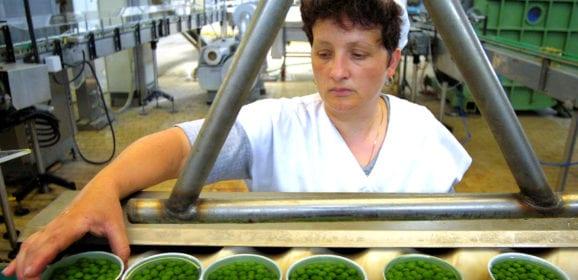 L'Umbria e il lavoro: nuovo rapporto Inps