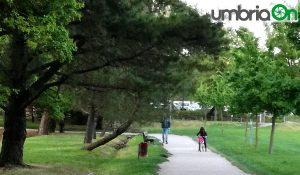 Percorso Verde Perugia albero pericolante