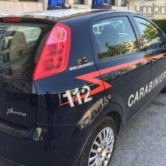 Terni, ladro da 'record': arrestato di nuovo