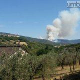 Fuoco fra Terni e Rieti, altro bosco in fiamme