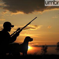 Umbria, caccia aperta: pioggia di sanzioni