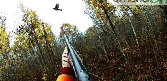 Colpito durante caccia: grave un uomo