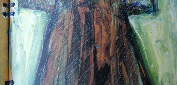 Terni, Borozan dipinge libri nella libreria
