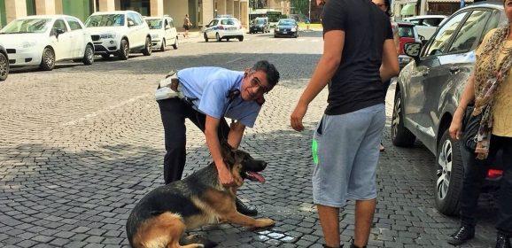 Terni, cane in salvo grazie alla municipale