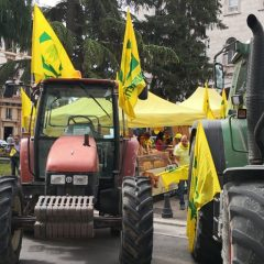 Terni, acqua 'cara': «Agricoltura colpita»