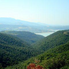 Monte Peglia: «Aperta una nuova fase»