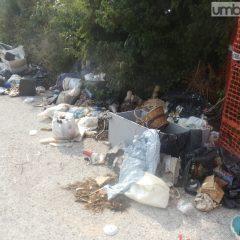 Terni, oltre 300 multe per inciviltà e rifiuti