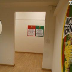 Collegio sindacale Ternana, c'è Sgrigna
