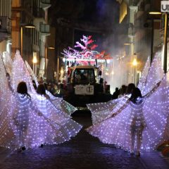 I carri del Cantamaggio nella gallery Mirimao