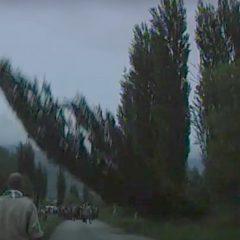 Il rito dell'albero a San Pellegrino – video