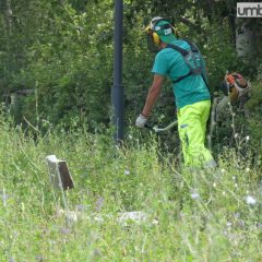 Terni, taglio erba e manutenzioni: si parte