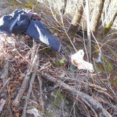 Getta rifiuti nel bosco, guai per un uomo