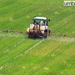 Agricoltura, sindacati: «Rinnovare contratti»