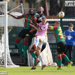 Ternana-Palermo 0-0, fotoracconto Mirimao