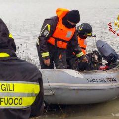 Lago di Corbara, i vigili del fuoco salvano Linus e Lasko