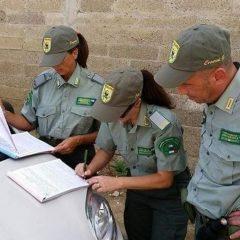 Cacciano con armi cariche a bordo strada: sanzioni e sequestri