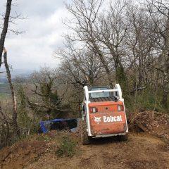 Bus fuori strada fra Montecchio e Guardea: via al recupero