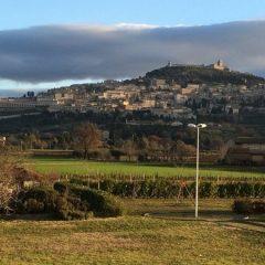 «Come perdere ad Assisi in sette mosse»