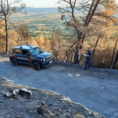 Un'estate infernale: 75 incendi boschivi e 270 ettari in fumo. Dieci denunce e un arresto